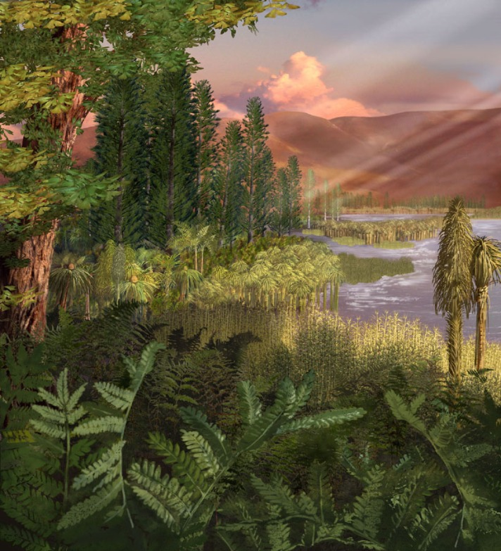 Australian_Museum_Late_Triassic_plants