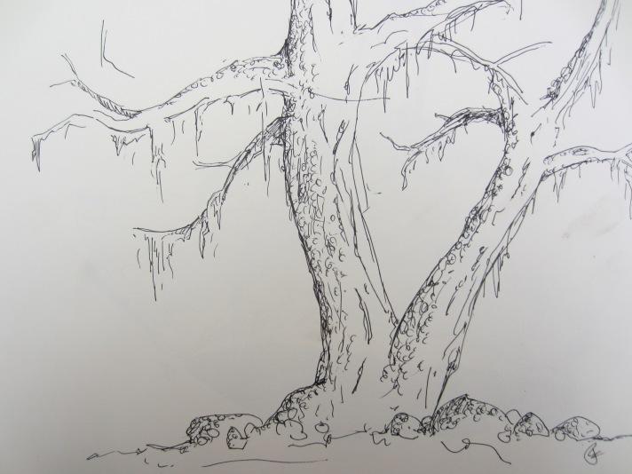 the magical dancing plat tree