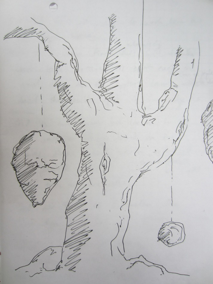 the magical flying stone tree